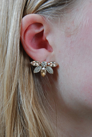 Lucia earrings champagne