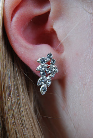 Lulu earrings crystal